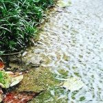 大雨とアクシデント